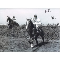 "Bob Champion 16x12"" montage photograph, riding Aldaniti the Grand National winner in 1981"